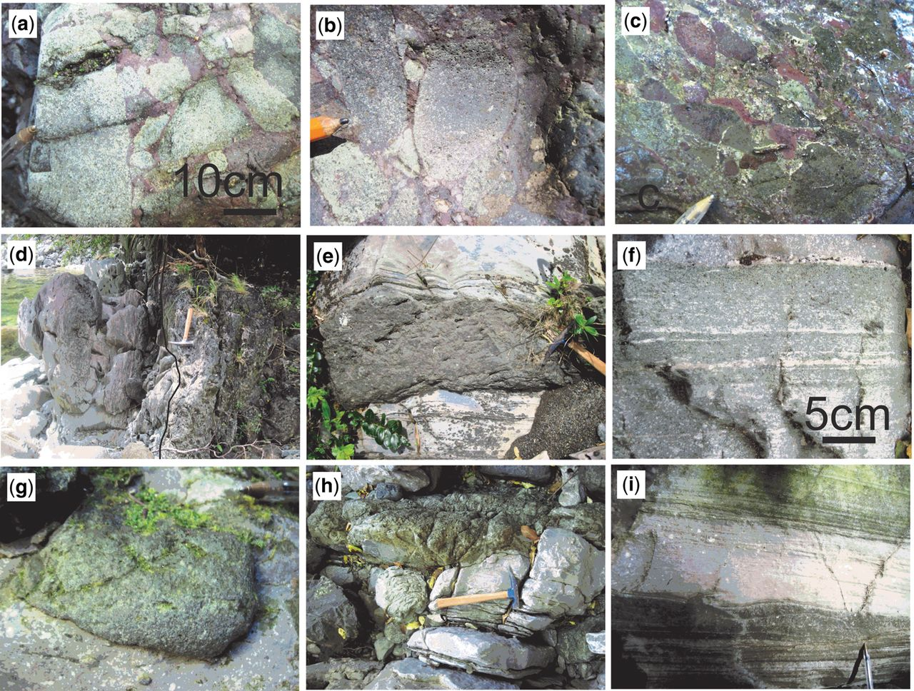 Chapter 9 Sedimentary development of the Mid-Permian–Mid